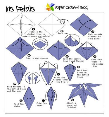 Step by Step Origami flower Instructions | ... glory origami ... Origami Flower Diagram on