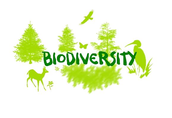 Biodiversity Achievements