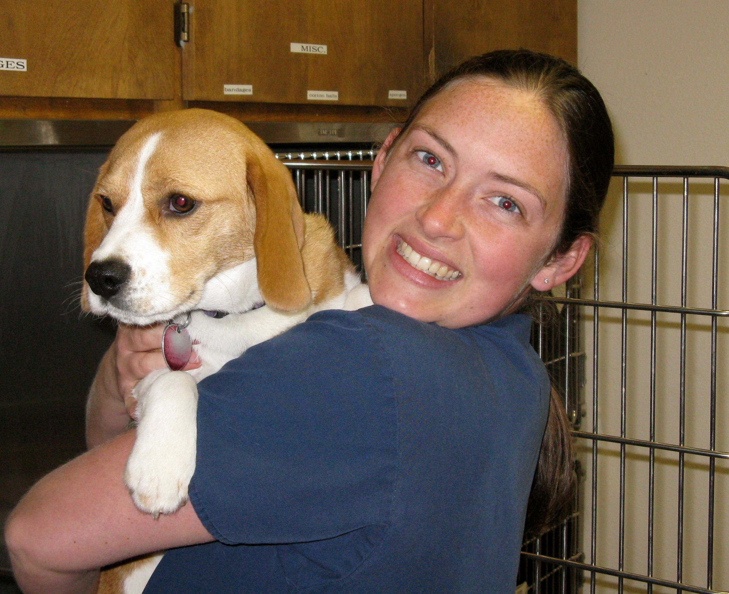 10++ Pets friend animal clinic images