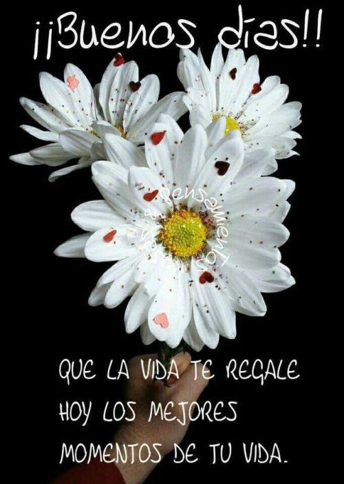 Imagen De Ilma Janeth Rey En Frases Positivas Frases De Buenos