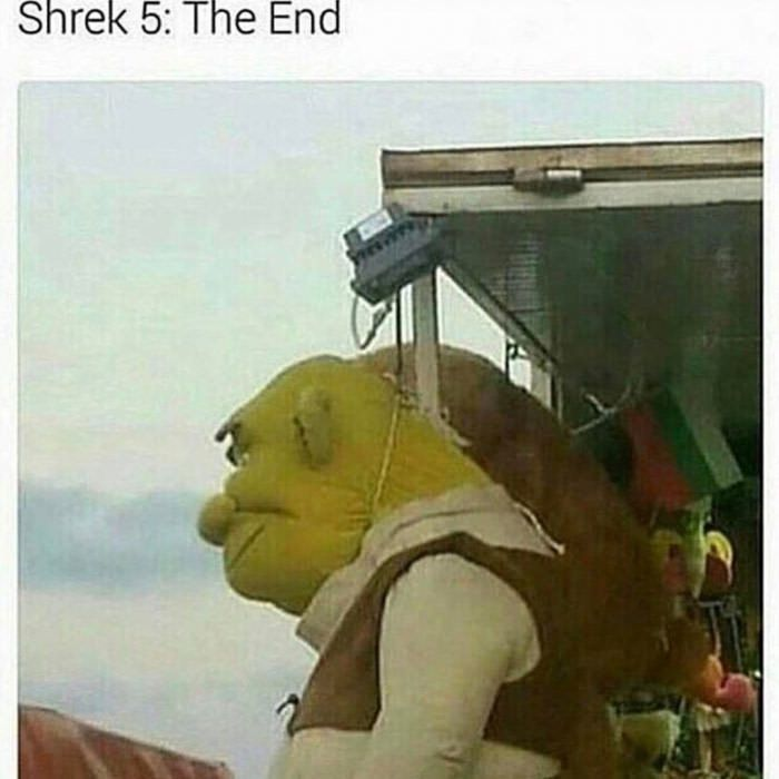 That S Just Horrible Stupid Memes Dankest Memes Funny Memes