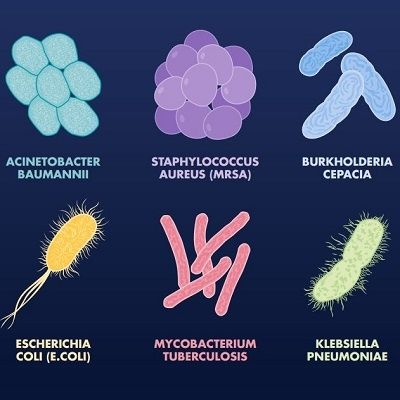 Not sure what bacteria you need to be worried about? Here ...