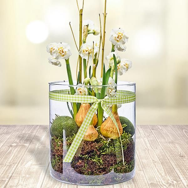 wei e orhideen im glas als deko fr hlingserwachen pinterest. Black Bedroom Furniture Sets. Home Design Ideas