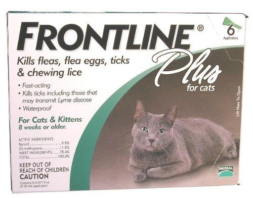 Frontline Plus Cat Learn More By Visiting The Image Link This Is An Affiliate Link And I Receive A Comm Cats And Kittens Frontline Plus For Cats Cat Fleas