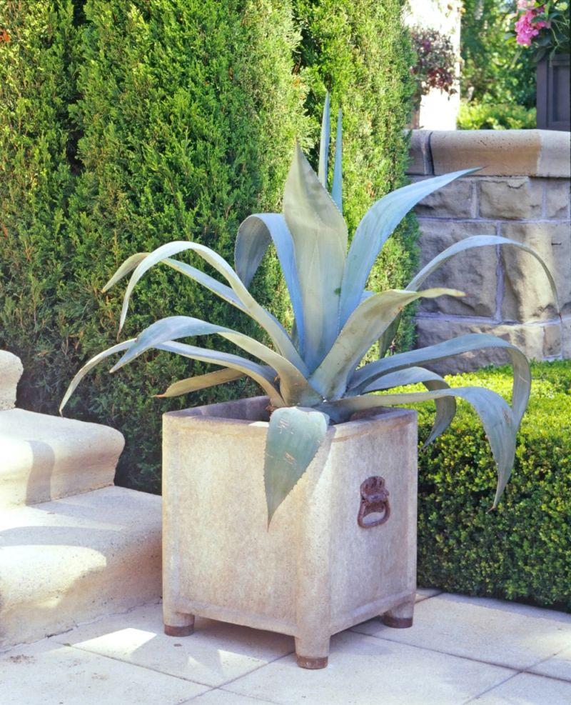 Nice Planters | INNER GARDENS / Garden Planters / MULTIPLES By Inner Gardens  French .