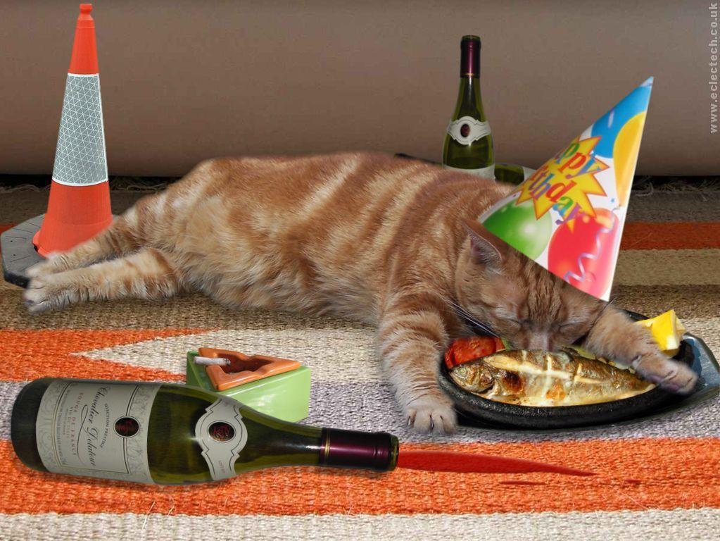 🤡 Imágenes Graciosas para Felicitar un Cumpleaños