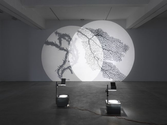 Overhead Projector Art Google Search Museum Art