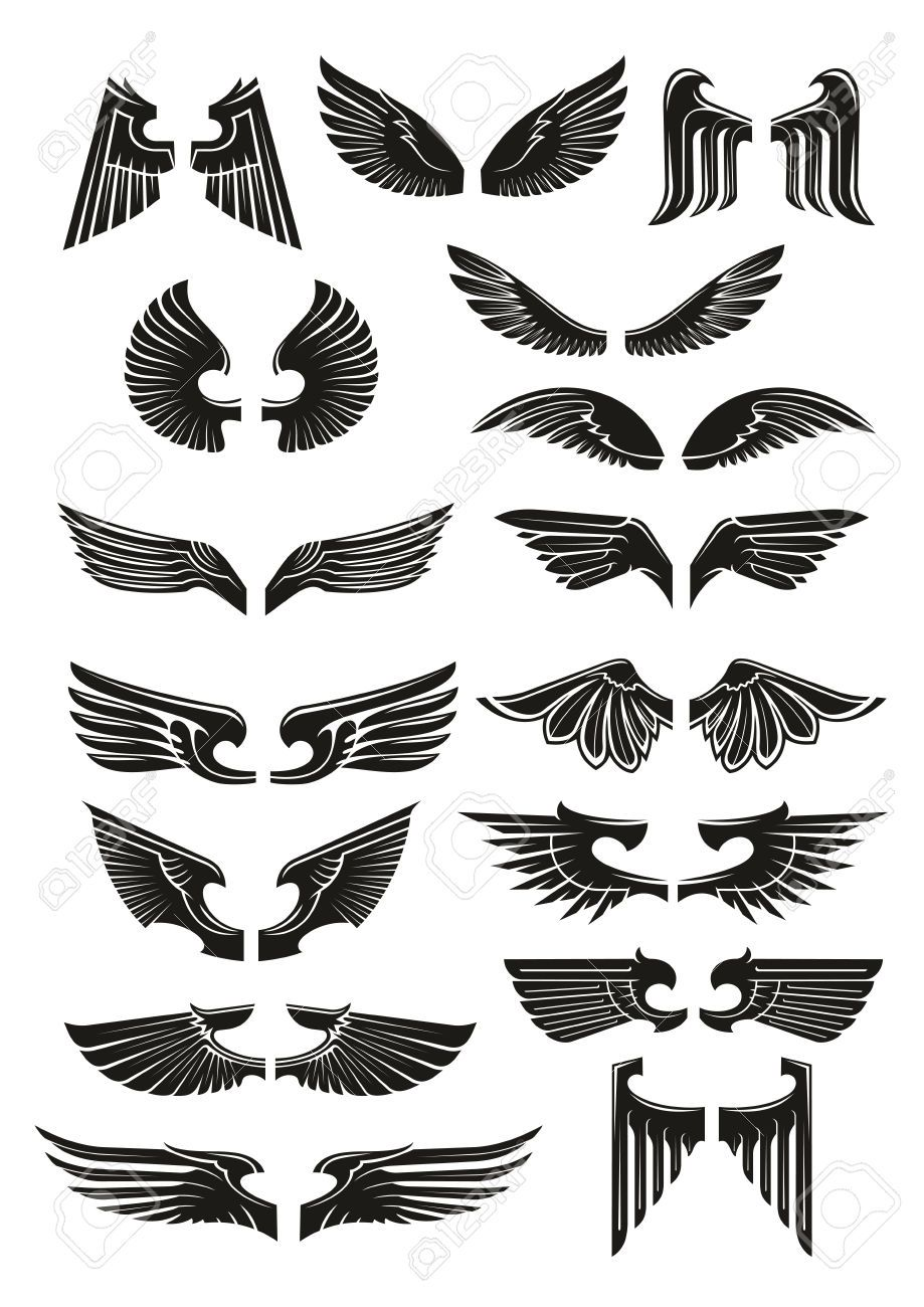 Stock Vector Wings icon, Wings sketch, Vintage birds