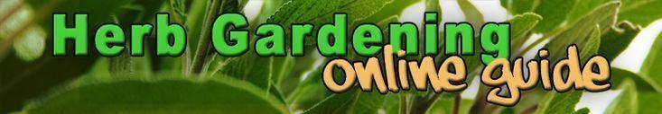 Der #Exklusive #Guide # für #Erfolgreiches #Wachsen #Fris    Gartentypen #kleinekräutergärten
