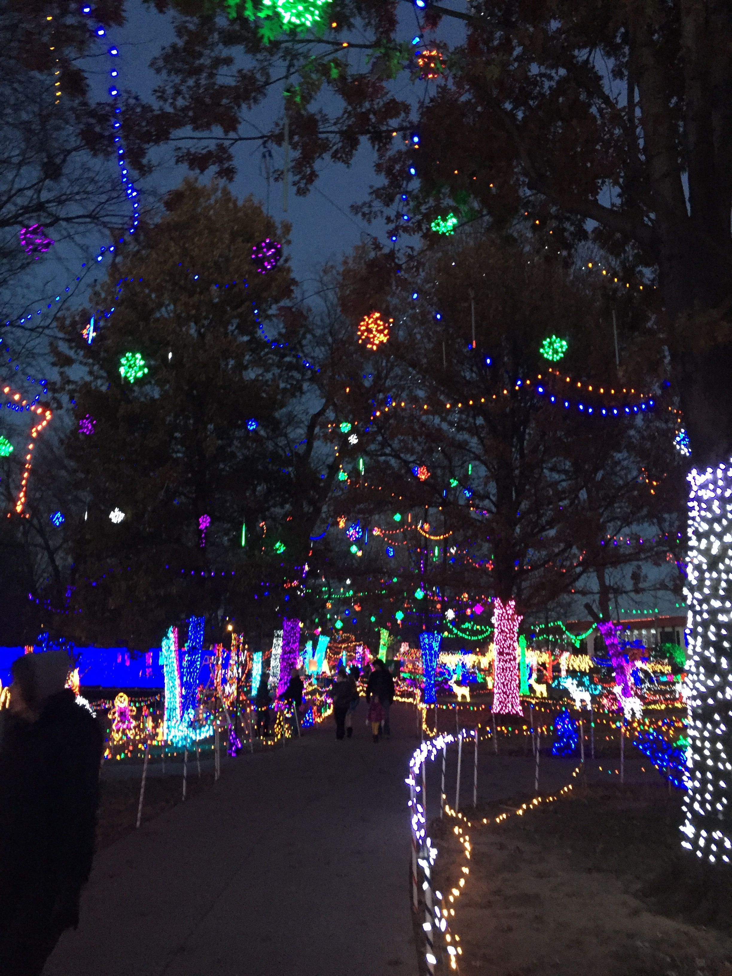 Rhema Christmas Lights.Rhema Christmas Lights Oh The Places I Will Go