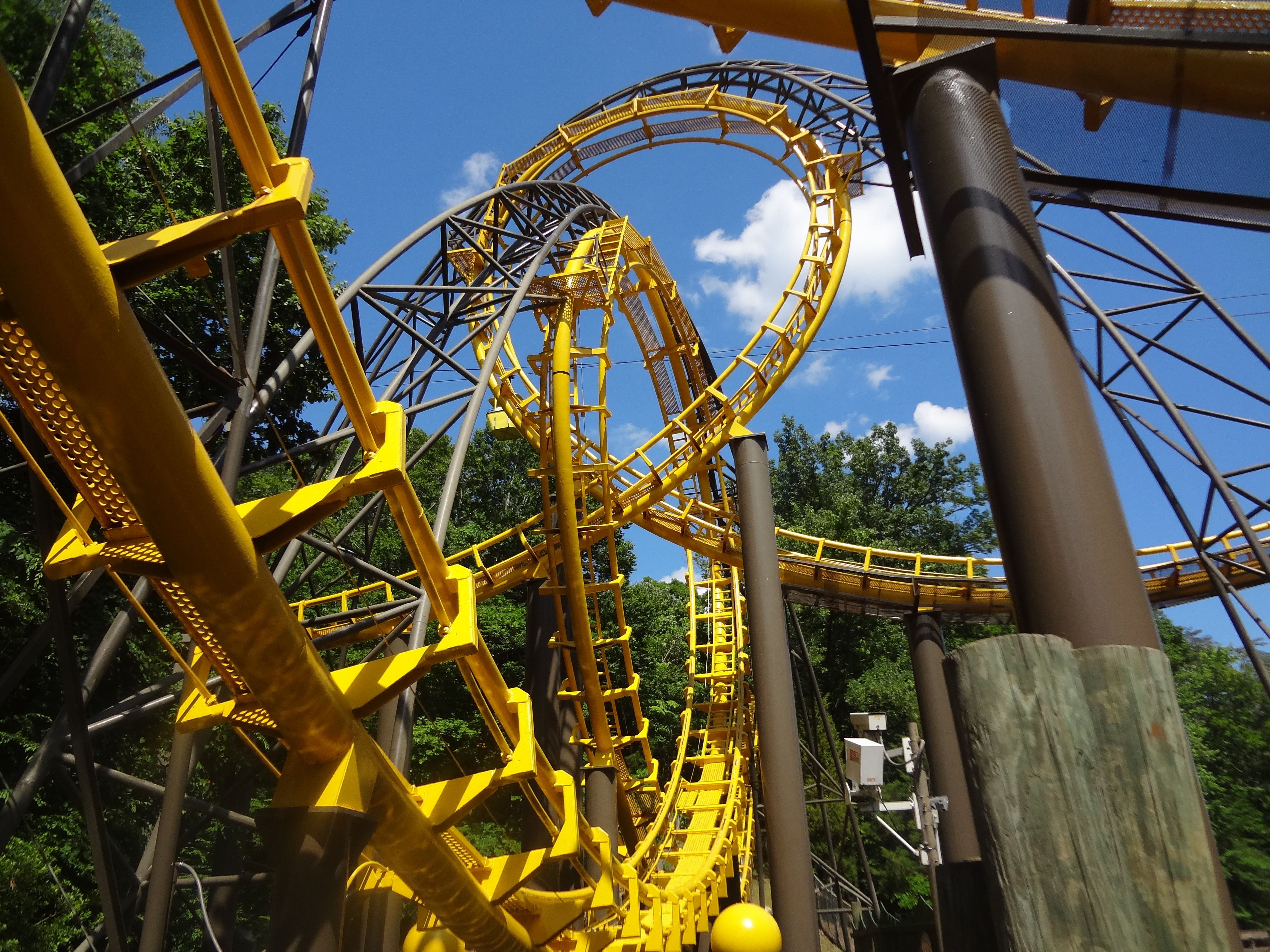 3627d88a80edcc91450e8d35b3071f65 - New Busch Gardens Williamsburg Roller Coaster