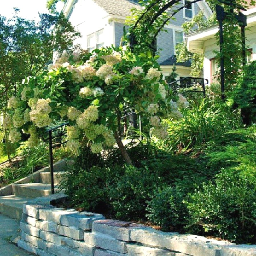Easy Landscaping Ideas You Can Try: Whimsical Garden Paths & Walkway Ideas