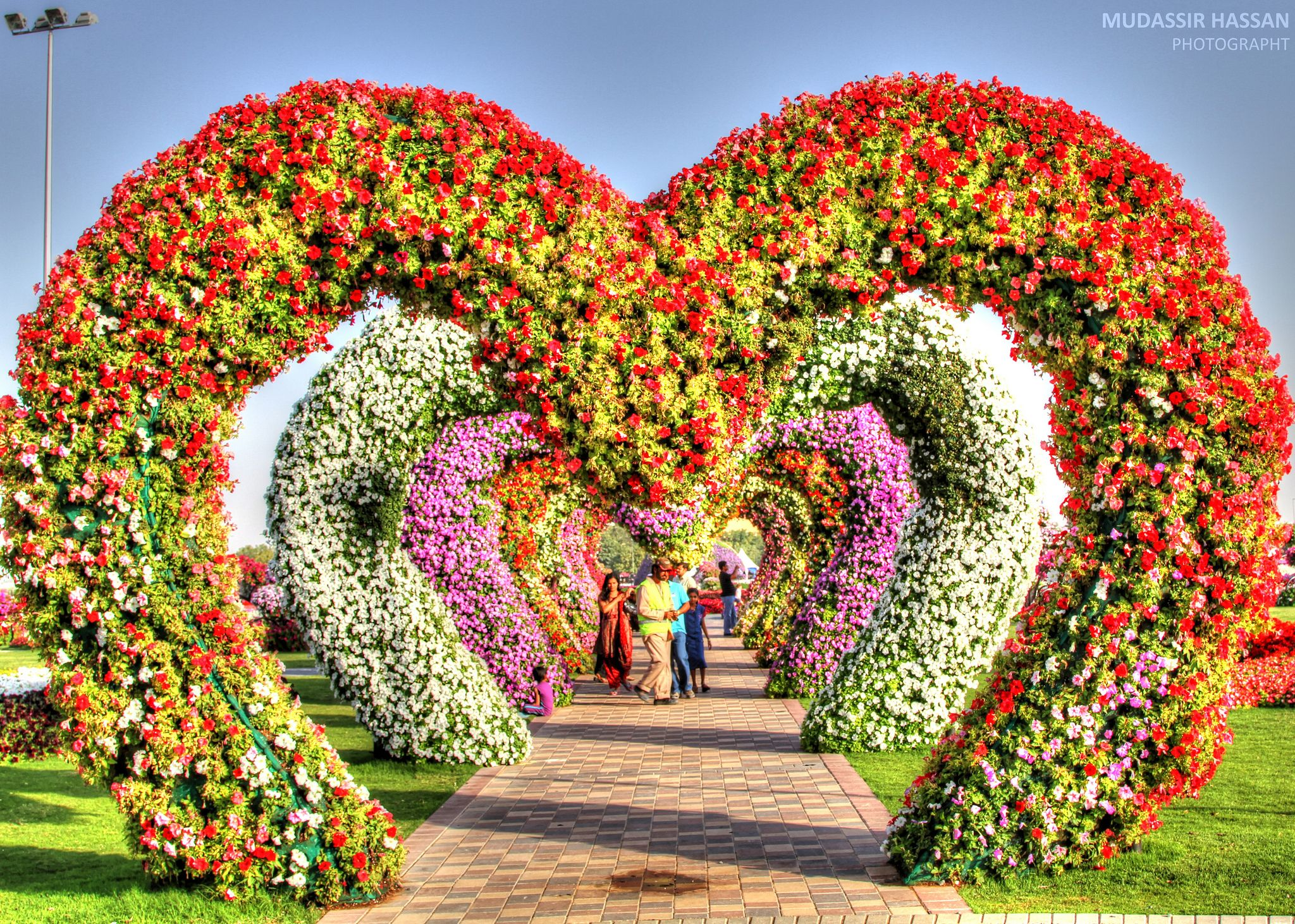 Dubai Miracle Garden Miracle garden, Beautiful gardens