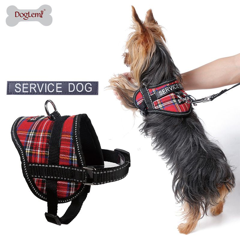 Find More Harnesses Information About Reflective Puppy Dog Service