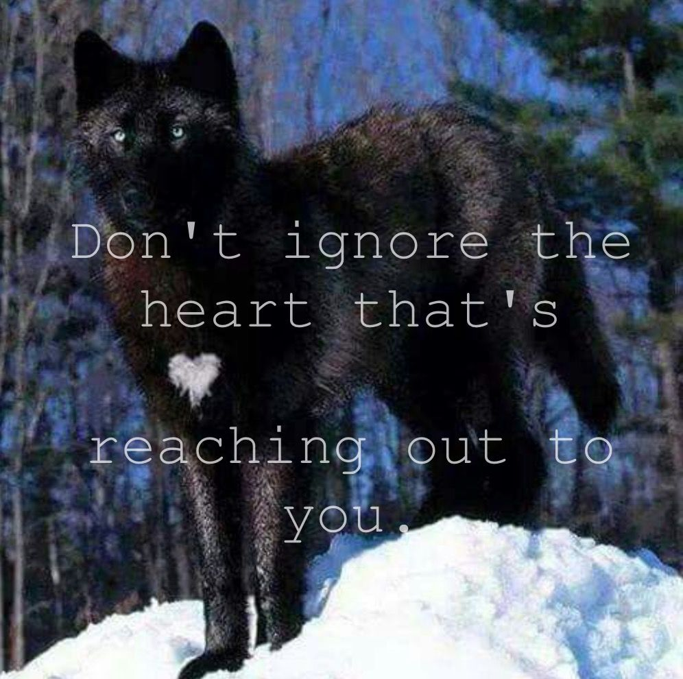 Don't ignore them!