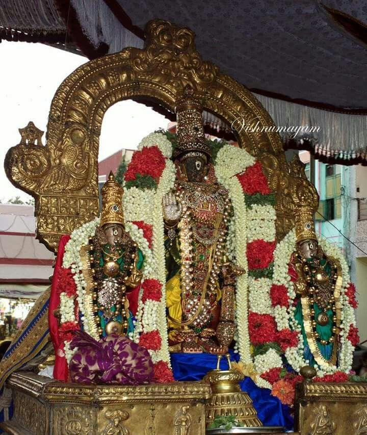 Parthasarathy Perumal (With Images)