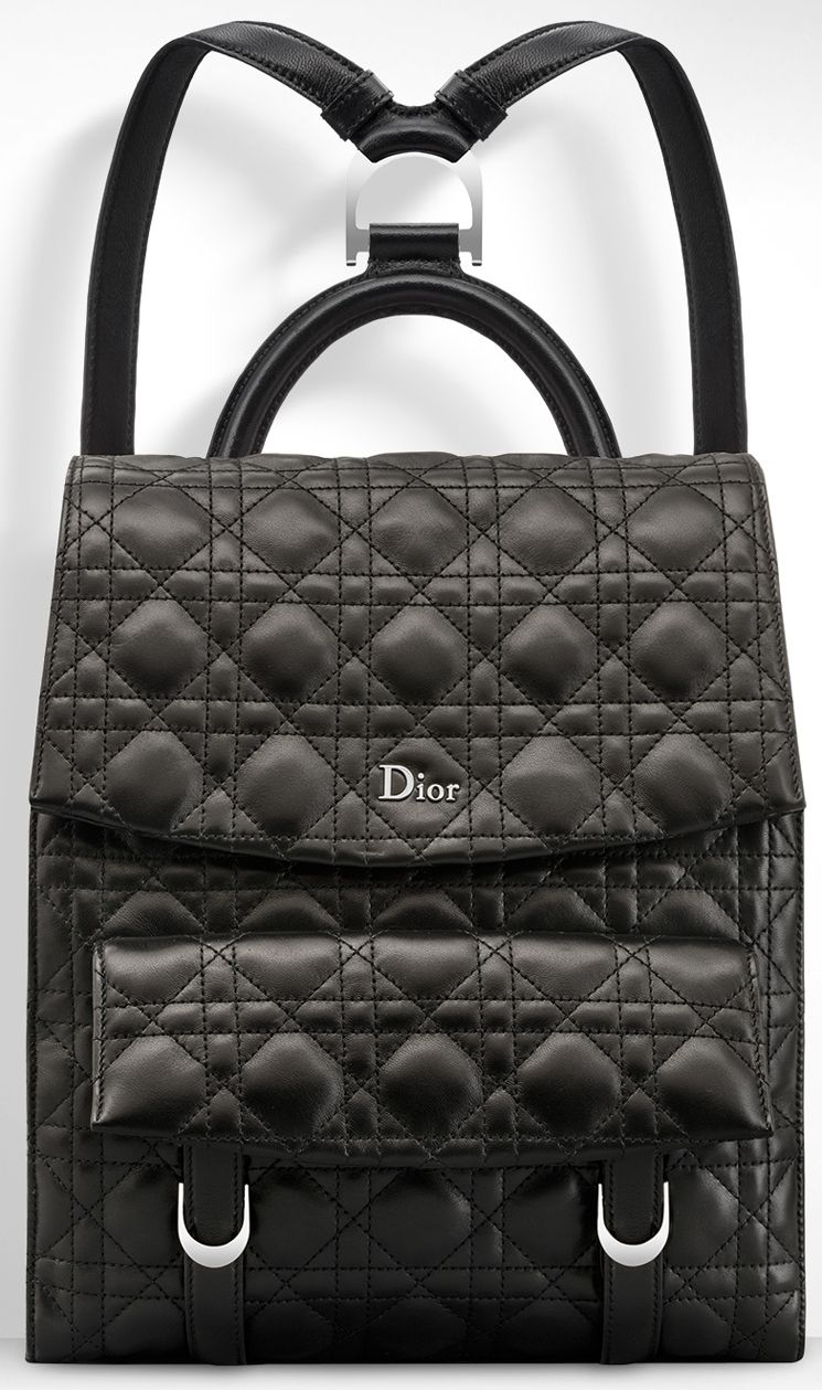 5431fade1654 Dior Stardust Backpack