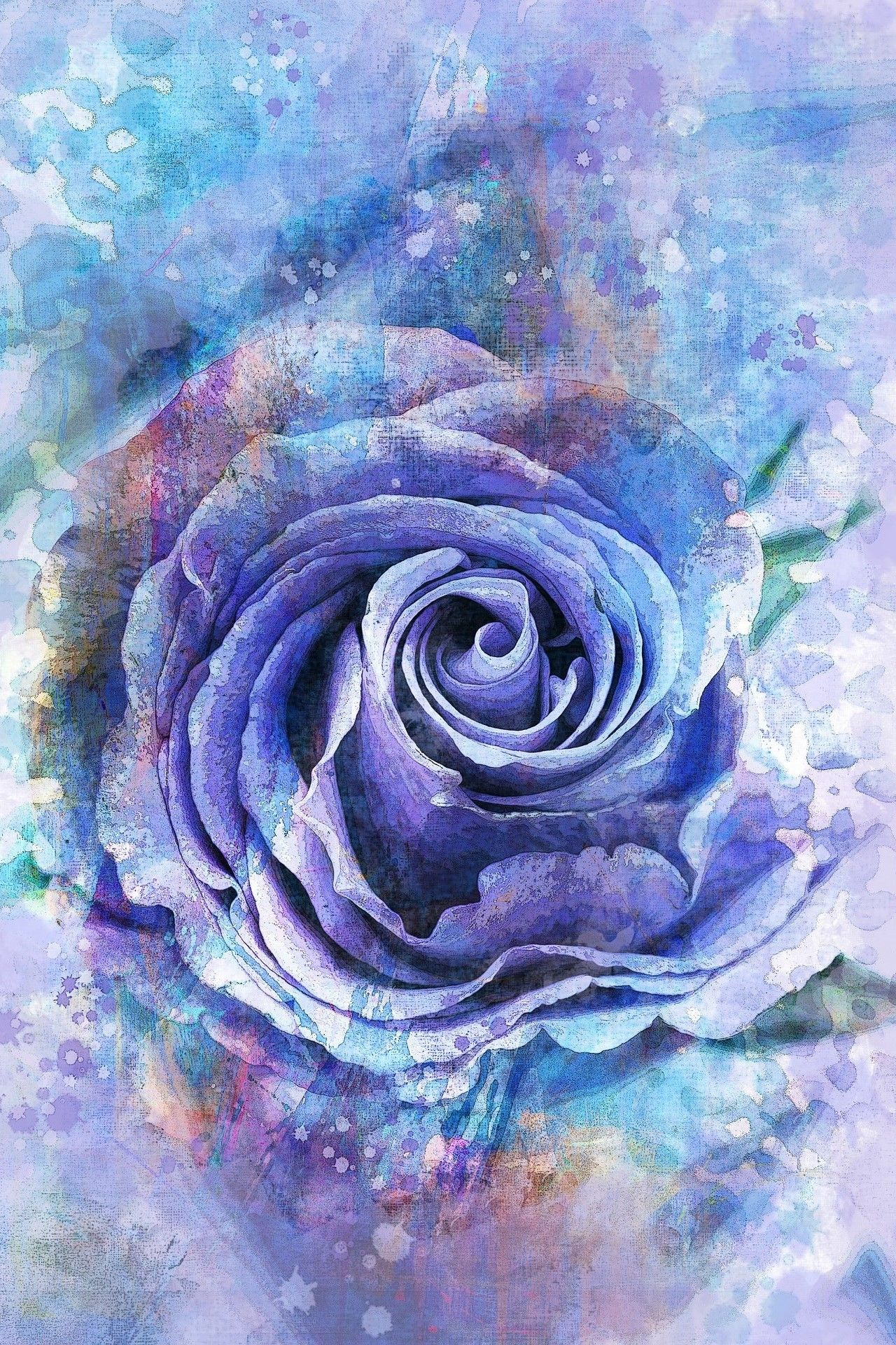 Blue Rose Painting Rose art, Watercolor rose, Purple