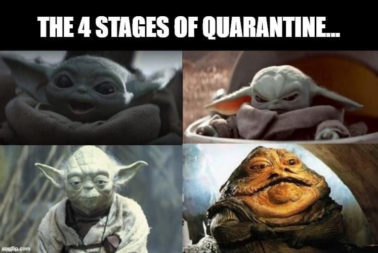 Pin By Olivia Rose On Star Wars Humor Star Wars Humor Star Wars Memes Star Wars Jokes