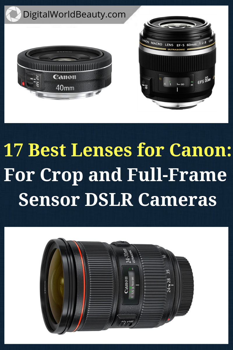 Best Lenses For Canon Cameras In 2020 Best Camera Lenses Canon Lens Camera Lenses Explained