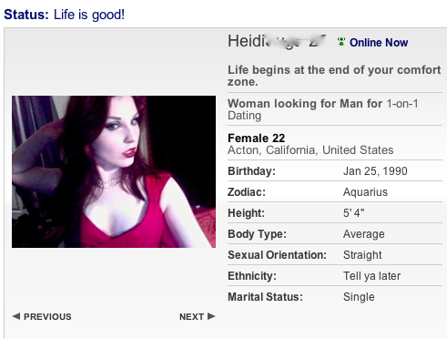 Sample profile message for hookup site