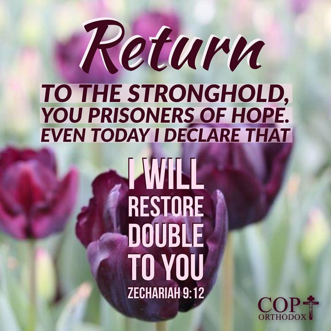 Zechariah 9:12 Return to the stronghold, You prisoners of hope. Even today I declare That I will restore double  to you. | Knowing god, Words of jesus, Zechariah