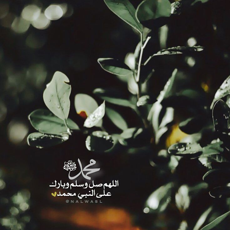 Heasosm بقايـا أمـل On Instagram إ ن الل ه وملائ ك ت ه ي صل ون ع ل ى الن ب ي يا أ ي ه Instagram Posts Instagram Photo