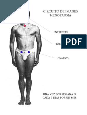 tratamiento de imanes para bajar de peso en concepcion