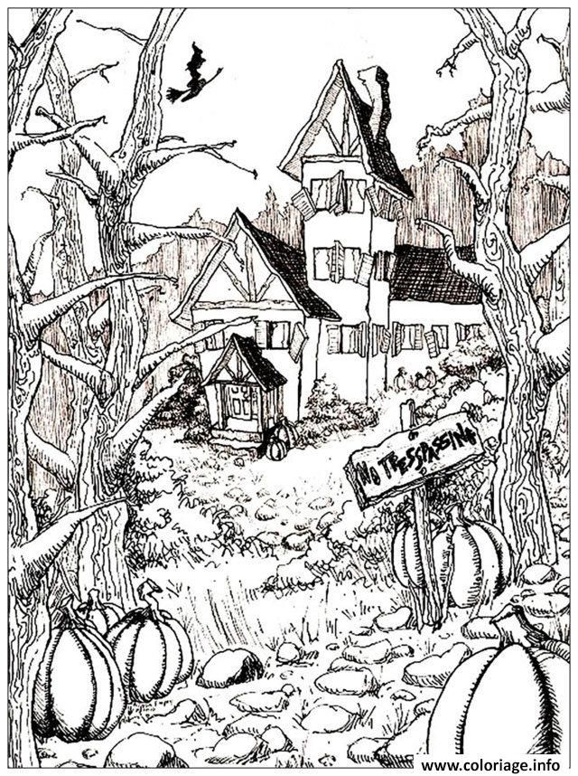 Coloriage Halloween Adulte Maison Citrouilles Dessin à Imprimer