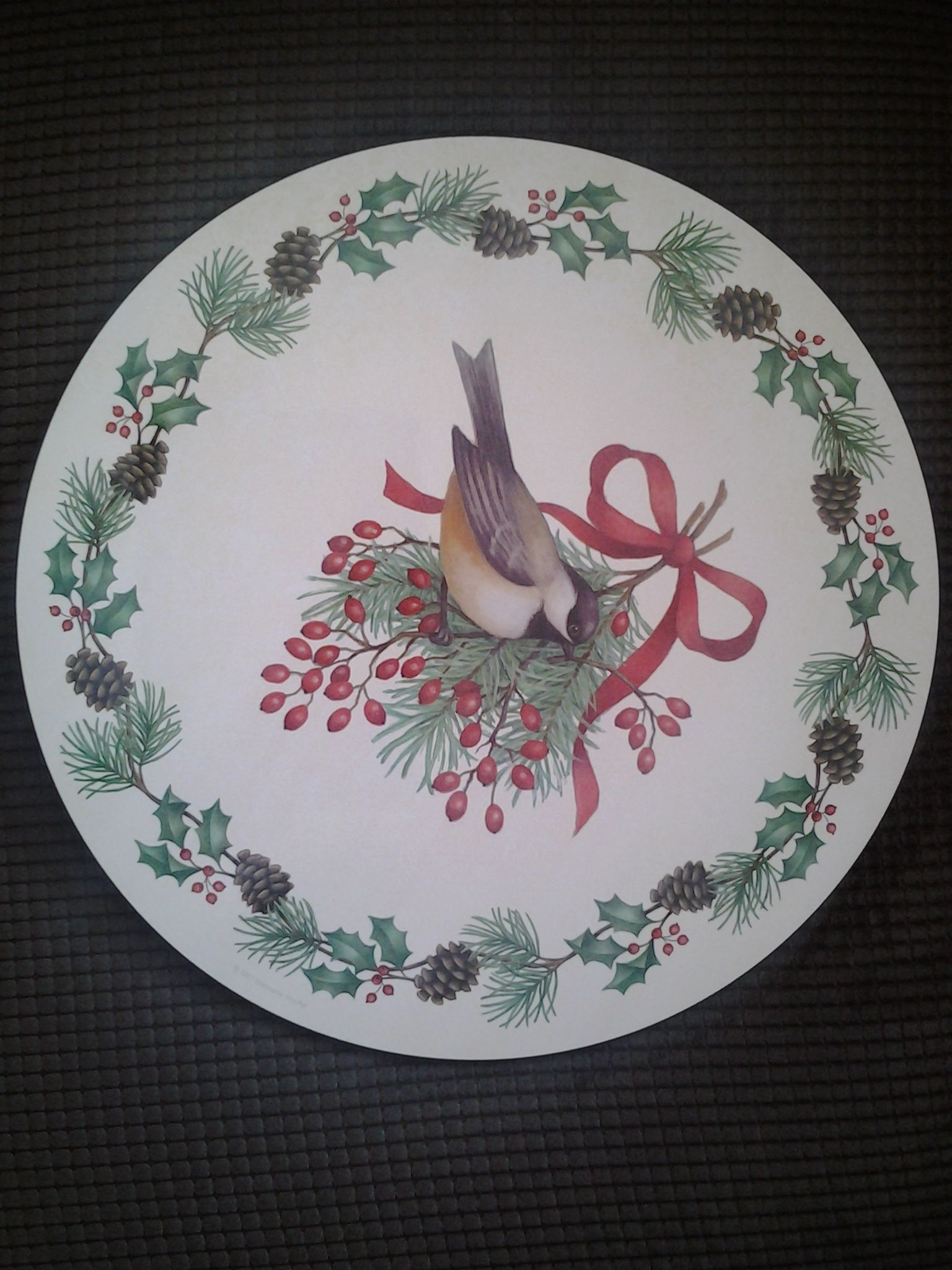 Set Of 4 Christmas Birds Placemats By Jason Beautiful Bird They Are From New Zealand Excellent Condition