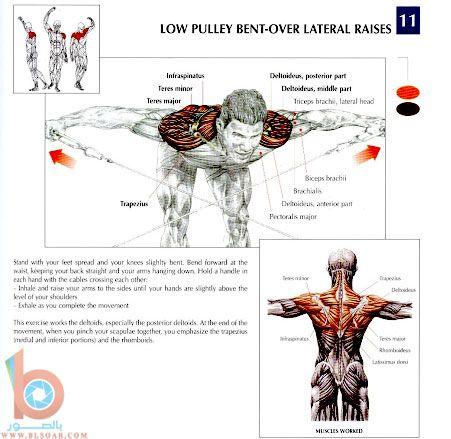بالصور تمارين عضلات الكتف والظهر