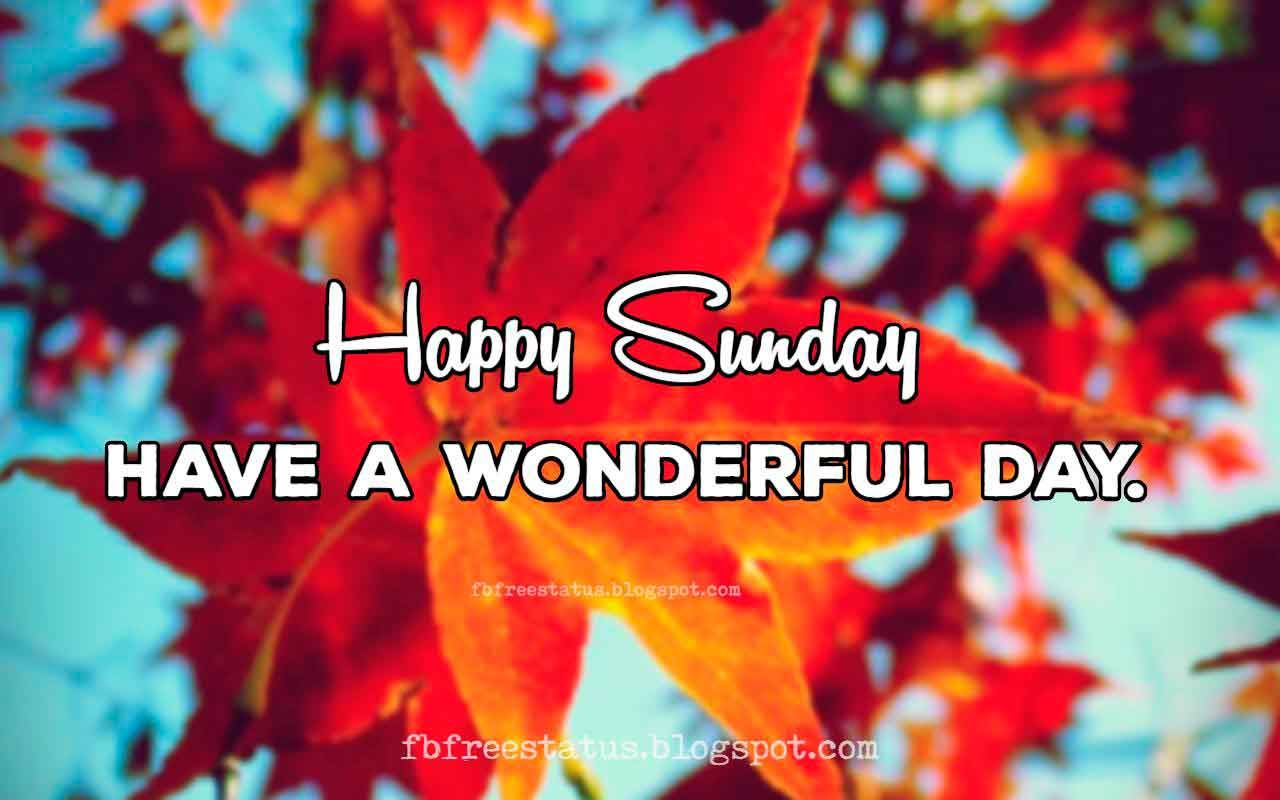 Funny Happy Sunday Quotes To Be Happy On Sunday Morning Days Of