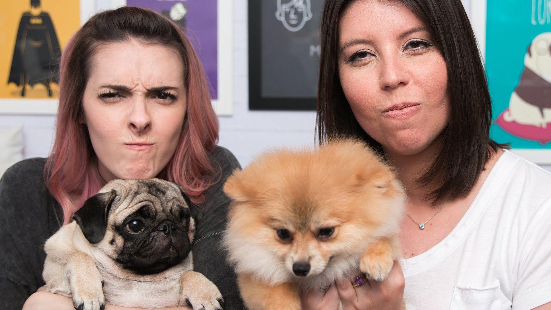 O que fazer com cachorro que brinca mordendo? - Karen Bachini feat Sara ...