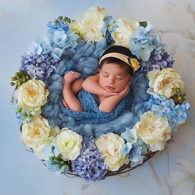 Instagram newborn photography ideas pinterest instagram newborn photography and babies