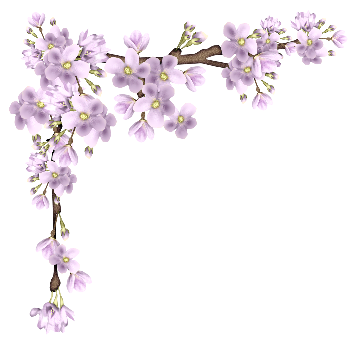Pink Spring Branch PNG Picture Flower painting, Flower