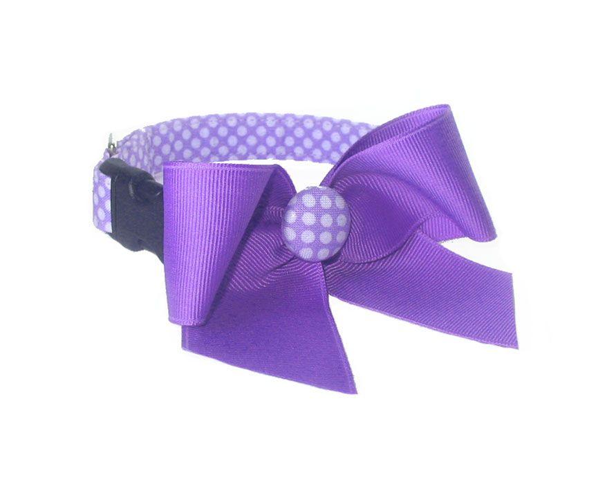 Purple Dot Dog Collar