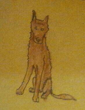 Un cane marrone