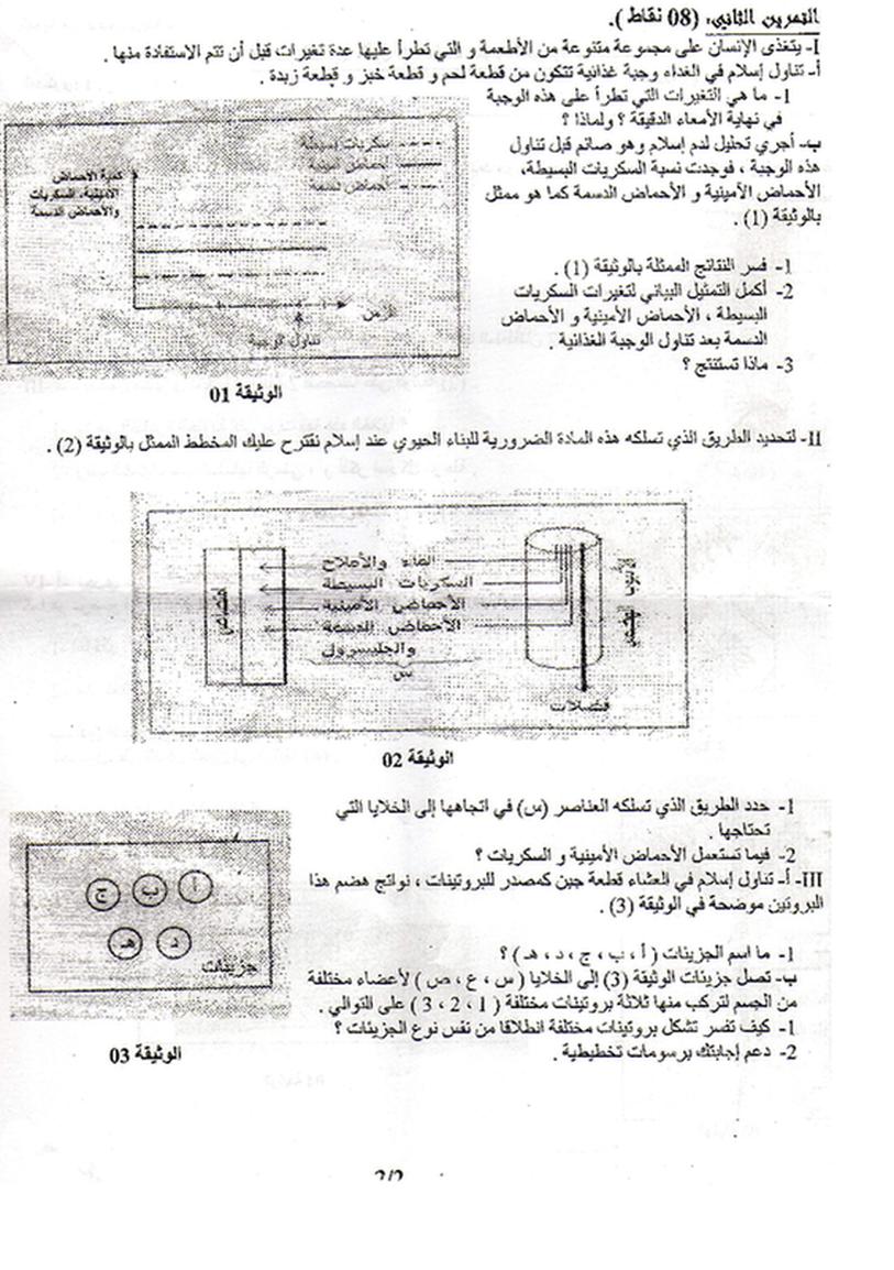 اختبار 1 علوم 1 ثانوي Education School Diagram