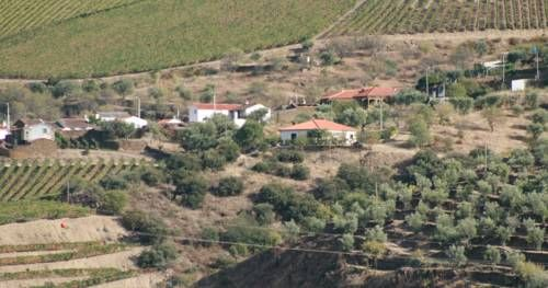 Stay in Douro São João da Pesqueira Stay in Douro is a holiday home with a barbecue, situated in São João da Pesqueira. The air-conditioned unit is 6 km from São João da Pesqueira Wine Museum, and guests benefit from free WiFi and private parking available on site.