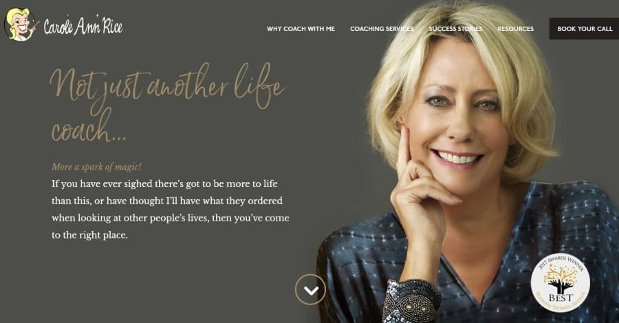 35+ Real Life Divi Theme Examples (Updated for 2019 ...