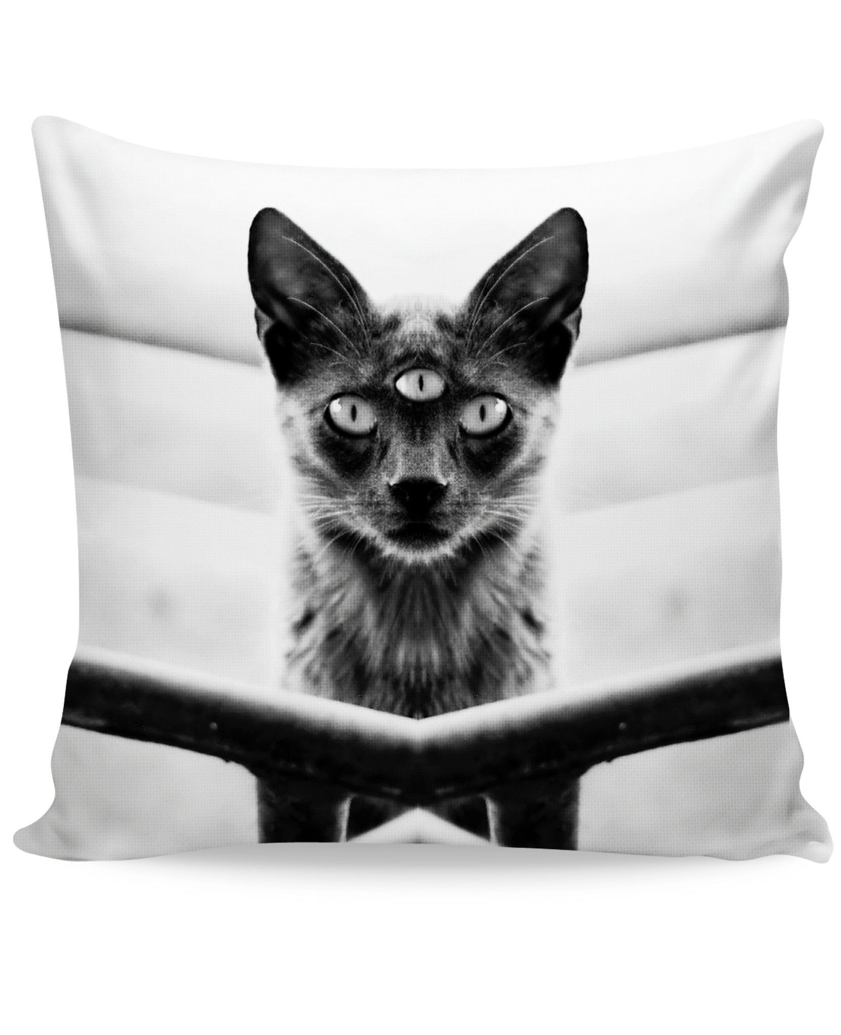 Third eyed cat couch pillow products