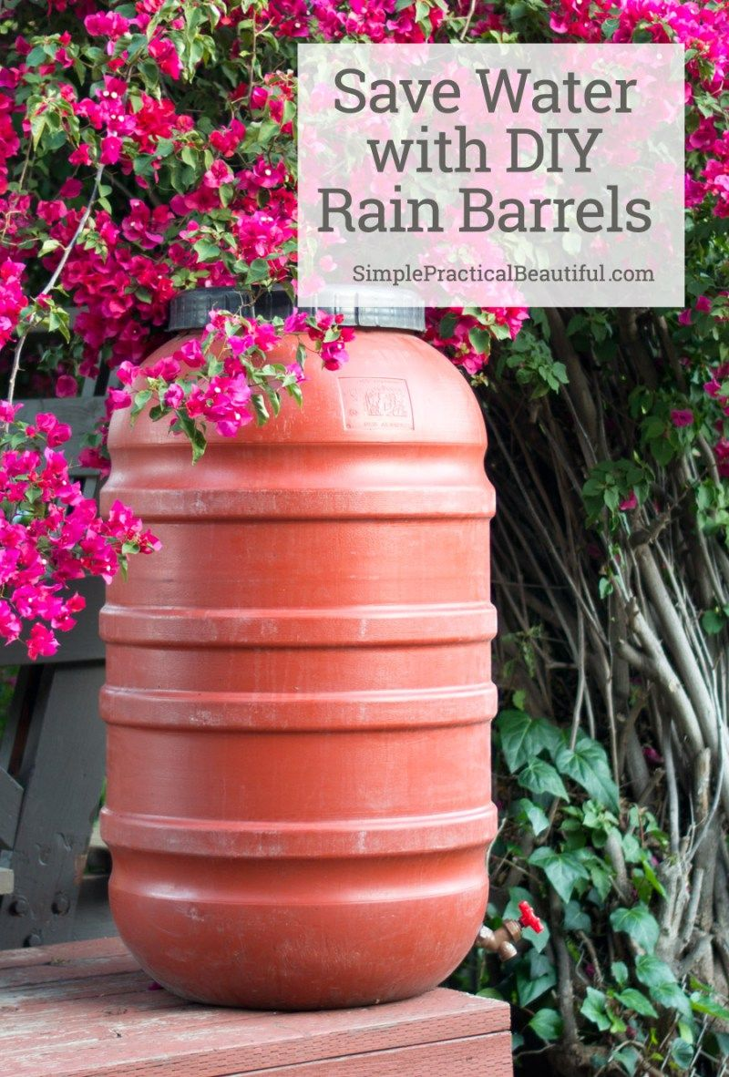 Diy Rain Barrel Gardens Rain Barrels And Money 400 x 300