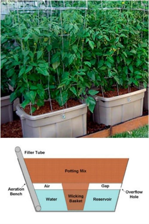 15 Diy Self Watering Planters That Make Container Gardening Easy Self Watering Planter Container Gardening Vegetables Diy Self Watering Planter