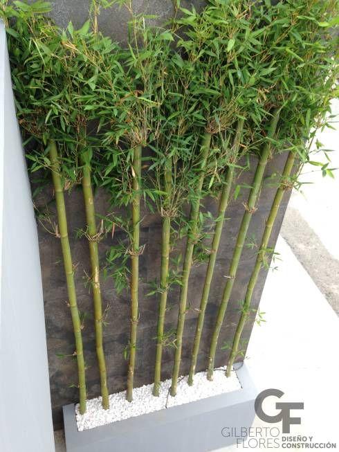 19 ideas para que tu jard n se vea como de hotel moderno - Canas de bambu decoracion exterior ...