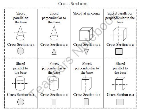 cross section reference | Ms. Somy | Pinterest | Study Guides ...