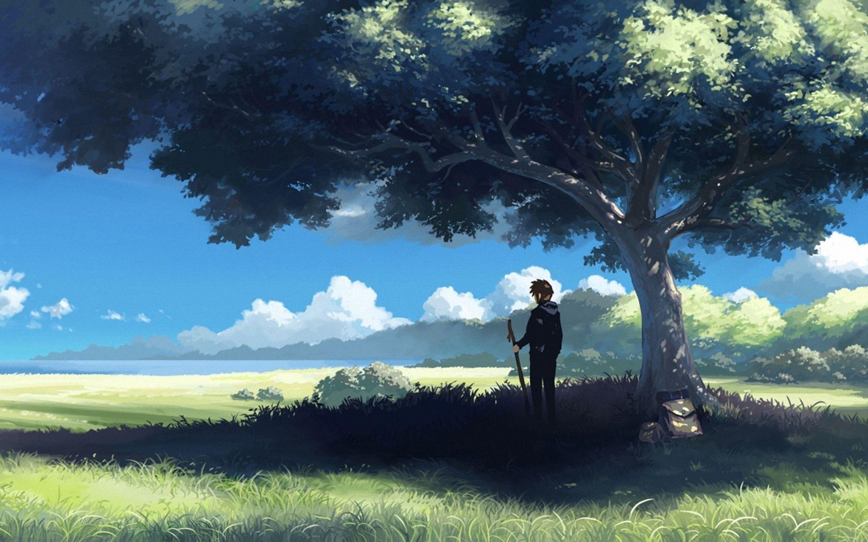 Anime Tree Scenery Free Wallpaper Desktop 42324 Wallpaper