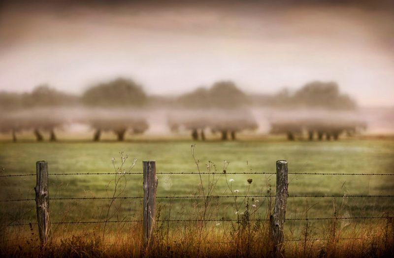 Landscape photography by Jimmy Williams
