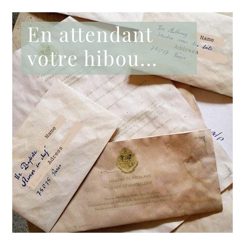 Qui n'a jamais rêvé de voir une chouette s'engouffrer par sa fenêtre pour lui déposer une lettre d'admission à Poudlard ? . Retrouvez tous nos conseils sur notre blog pour organiser une soirée Harry Potter de folie ! ⚡️⚡️ #harrypotter #harrypotterparty #diy #handcrafted