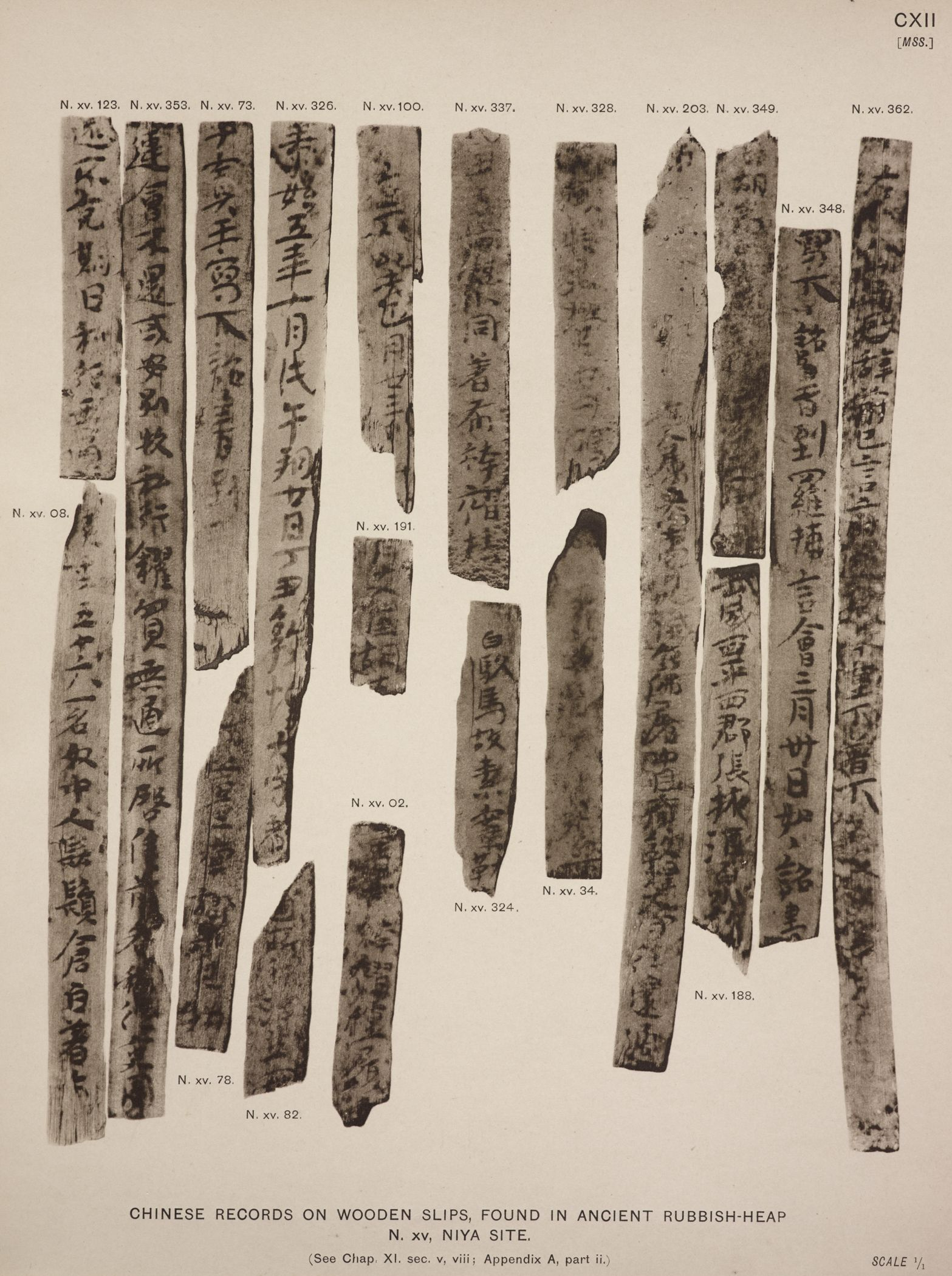 Chinese records on wooden slips, found in ancient rubbish-heap N. XV, Niya site. (See Chap. XI, sec. v, viii; Appendix A, part ii.)