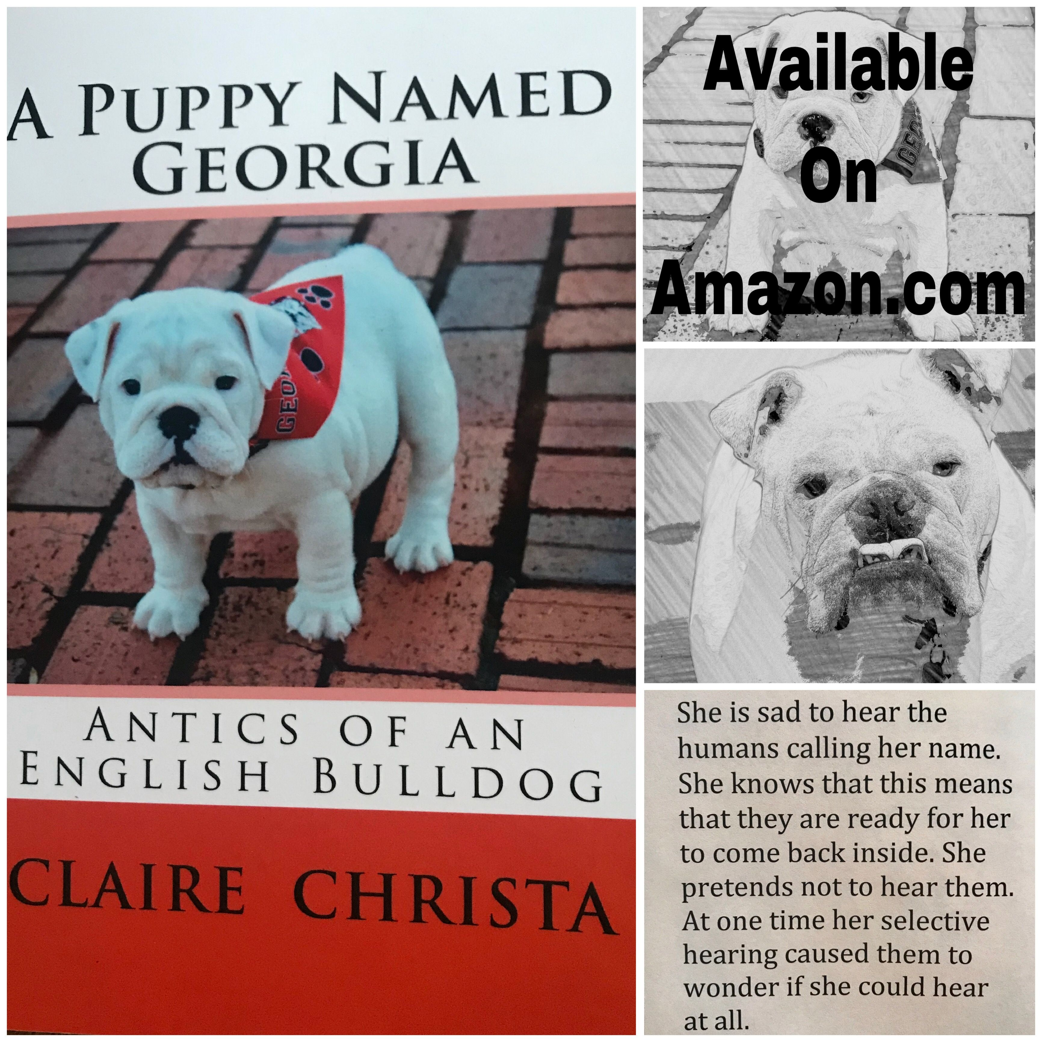 Children S Book For Sale About An English Bulldog Named Georgia